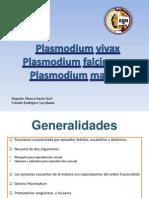 Exposicion Plasmodium Sp.