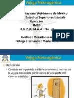 128190735-Vejiga-Neurogenica