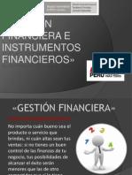 Gestión FF e Instrumentos FF