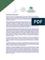 Culturalidad y Sistema Dual.docx