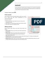 Daftar-istilah-anatomi.pdf