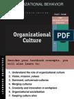 OB Culture 18