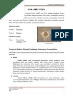 Tugas 1 Foraminifera