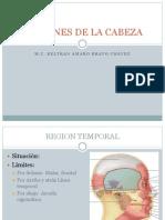 Regiones de La Cabeza i anatomía humana