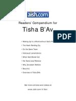 9 Av-reader - Aish