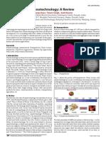 Nanotechnology a Review