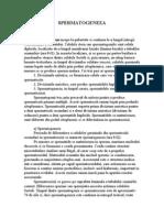 128908550 Spermatogeneza Foitele Embrionare Anexele Embrionare Influenta Medicamentelor Asupra Fatului Stadiile Dezvoltarii Fatului Uman Cardiogeneza