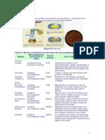 bacteriología de agua
