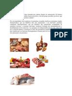 Proteína, carbohidratos, grasas, minerales, vitaminas nuevo.docx