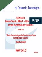 Disegno Estructural Zonas Tsunami-Rodolfo Saragoni