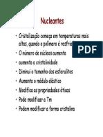 Slides Nucleantes 2010.pdf