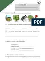 Estudo Do Meio_ Plantas e Animais