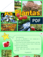 As Plantas Resumo