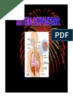 Clase Histologia Del Sistema Respiratorio