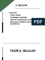 Teoría celular_13A