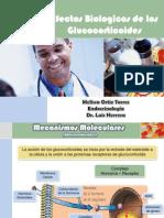 Efectos Biologicos de Los Glucorticoides