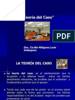 TEORÌA DEL CASO (1)