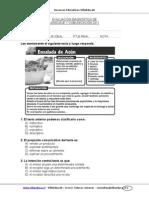 Evaluacion Diagnostica Lenguaje 7basico 2011