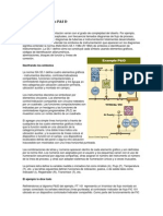 Cómo leer Diagramas P&I