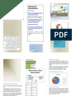 brochure pea plant