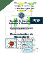 Guia de Concentracion de Minerales II