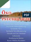 Ökopsychologie (German edition)