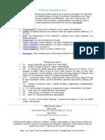 Fichas de gramática latina