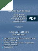 amibas-de-vida-libre-1198617796718829-4