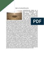 Qué es la desertificación
