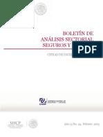 Boletin+de+Analisis+Setorial+de+Seguros+y+Fianzas+Diciembre+2012.Desbloqueado