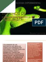 Venenos de Serpiente