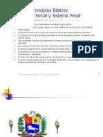 _Principios Basicos Control Social y Sistema Penal