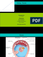 Histology Placenta