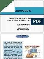 Portafolio IV