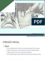 Anestesia Para Cirugia de Nariz