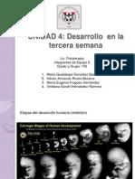 Exposicion Embriologia Unidad 4 Tercer Semana