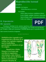 Propagacion Asexual de Las Plantas, Factores y Tipos