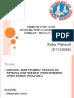 Promosi Kesehatan Mengenai Demam Berdarah Dengue (Dbd