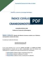 9. Indice Cefalico
