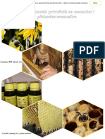 Mali Pčelarski Priručnik za Neznalice i Pčelarske Sveznalice