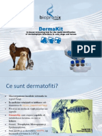 Dermatomicozele Zoonotice Si Diagnosticul Veterinar Produsul Dermakit