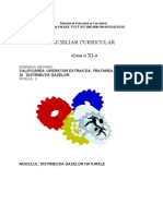 Mecanic Xi Distributia Gazelor Naturale.doc