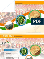 Nagaland - August 2013