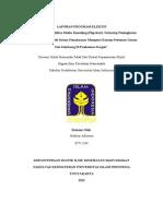 Laporan Elektif Ikm - Nuklear Adiwena (07711204f