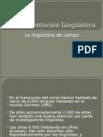 Lingüística de campo