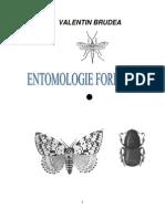 entomologie_1