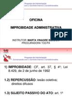 01  Improbidade Marabá 2013