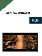 MADUVA_2