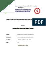 Caratula de Inspeccion
