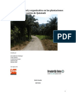 Situación laboral y organizativa en las plantaciones de palma en el cantón de Quinindé